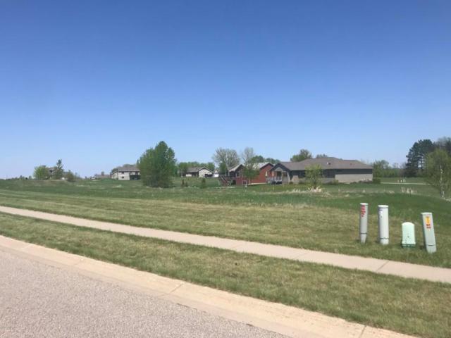1506 Wildwood Drive, Lake City, MN 55041 (#5032406) :: House Hunters Minnesota- Keller Williams Classic Realty NW