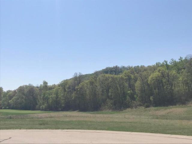 129 Emerald Lake Drive, Lake City, MN 55041 (#5032408) :: House Hunters Minnesota- Keller Williams Classic Realty NW