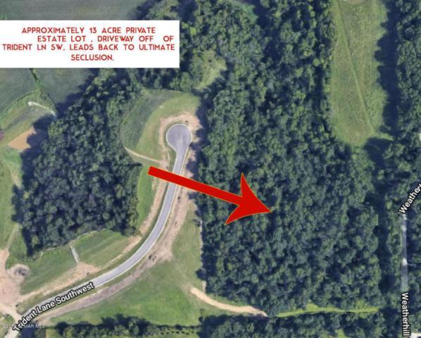 TBD Trident Lane SW, Rochester, MN 55902 (#5032628) :: The Michael Kaslow Team