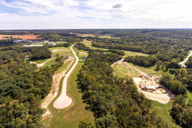 TBD Salley Ridge (L1b1) Lane NE, Rochester, MN 55906 (MLS #5032785) :: The Hergenrother Realty Group