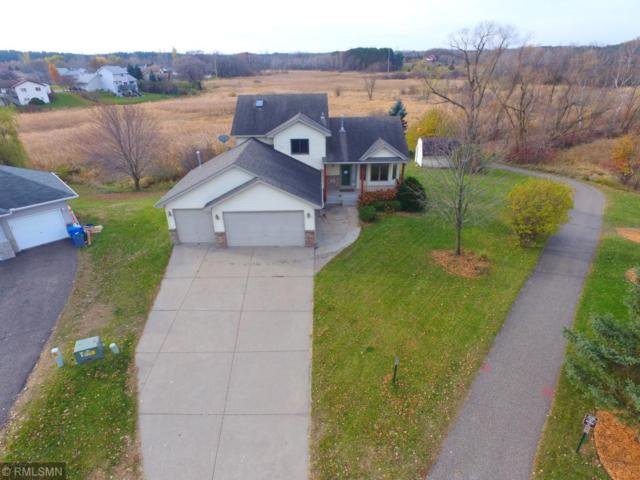 19418 Elgin Court NW, Elk River, MN 55330 (#5130544) :: Centric Homes Team