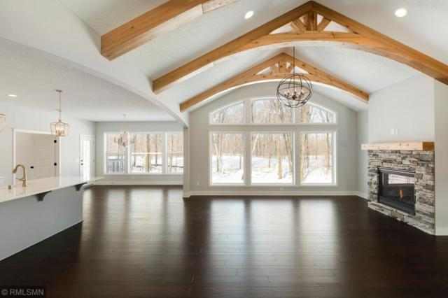 673 Shawnee Woods Road, Medina, MN 55340 (#5132087) :: The MN Team