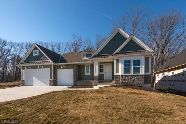 9172 Maas Drive, Minnetrista, MN 55375 (#5132248) :: The Snyder Team