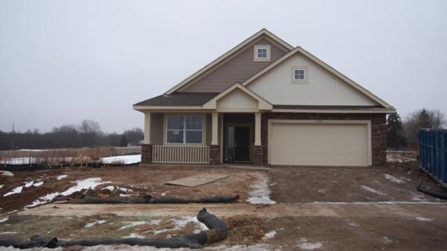 8339 63rd Street S, Cottage Grove, MN 55016 (#5132994) :: The Snyder Team
