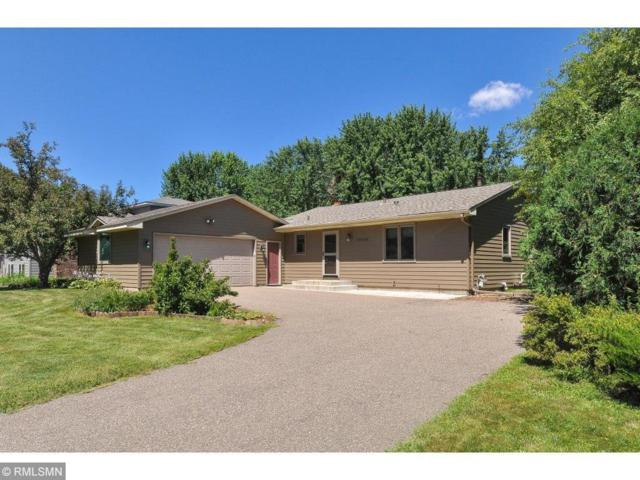 17208 Duck Lake Trail, Eden Prairie, MN 55346 (#5134060) :: The Janetkhan Group