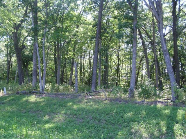 Lot 3/3 Xerus Street NW, Zimmerman, MN 55398 (#5134114) :: The Preferred Home Team