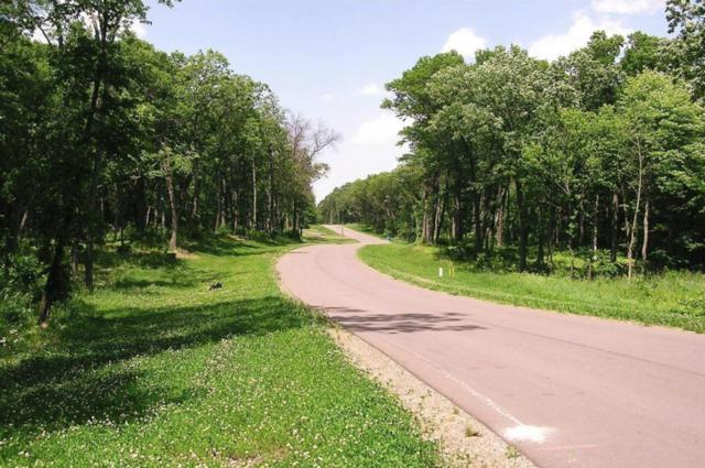 Lot 5/3 Xerus Street NW, Zimmerman, MN 55398 (#5134284) :: The Preferred Home Team