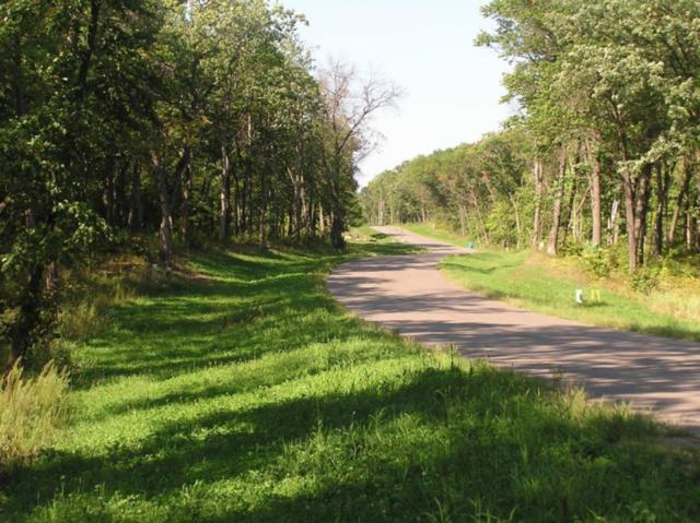 Lot 4/3 Xerus Street NW, Zimmerman, MN 55398 (#5134422) :: The Preferred Home Team