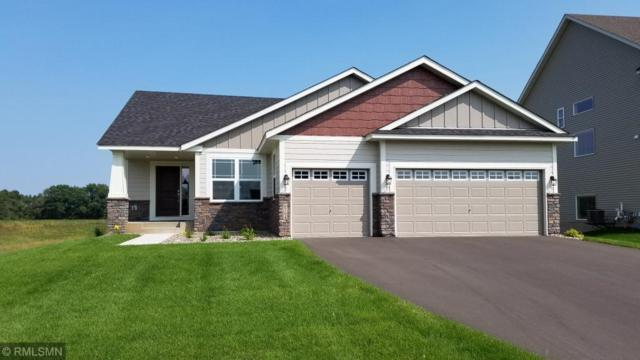 6922 94th Street S, Cottage Grove, MN 55016 (#5136149) :: The MN Team