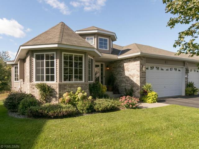 11372 17th Place NE, Saint Michael, MN 55376 (#5137097) :: House Hunters Minnesota- Keller Williams Classic Realty NW