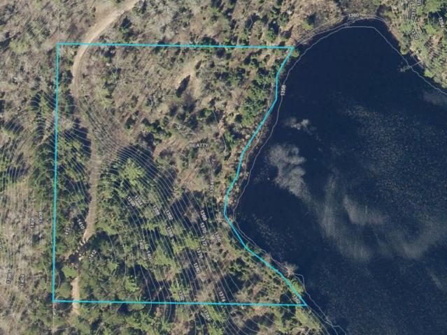 4xx3 Genore Trail, Beatty Twp, MN 55771 (#5137745) :: House Hunters Minnesota- Keller Williams Classic Realty NW