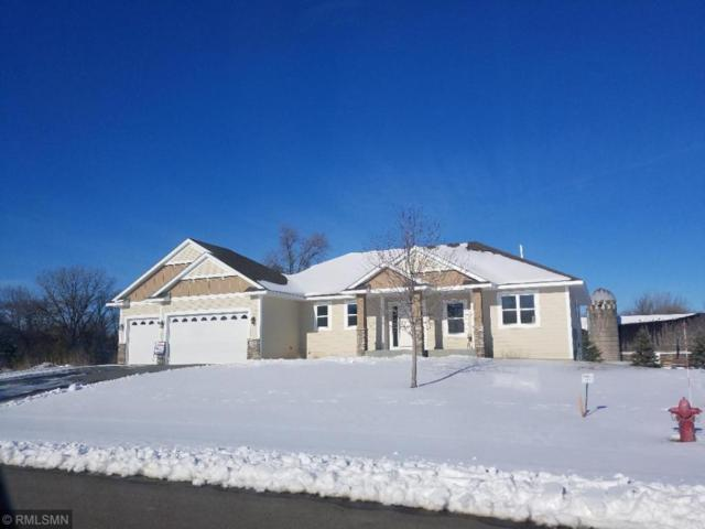 3483 205th Street Court W, Farmington, MN 55024 (#5138125) :: The MN Team
