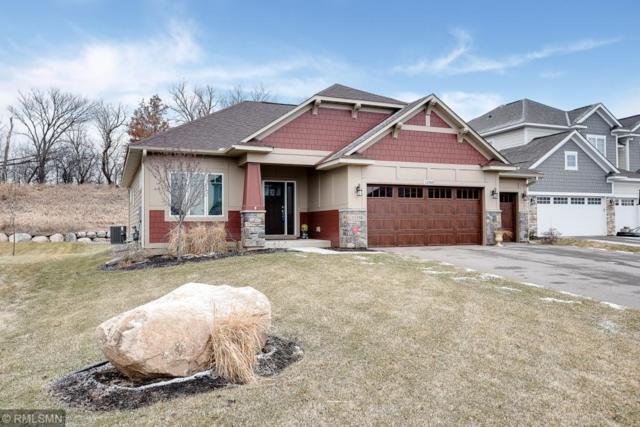 11358 Sand Castle Drive, Woodbury, MN 55129 (#5138641) :: The MN Team