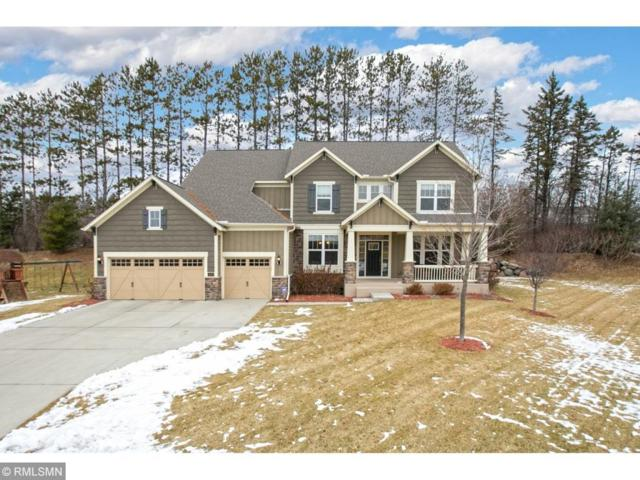 4091 Pipewood Lane, Excelsior, MN 55331 (#5138743) :: The Janetkhan Group