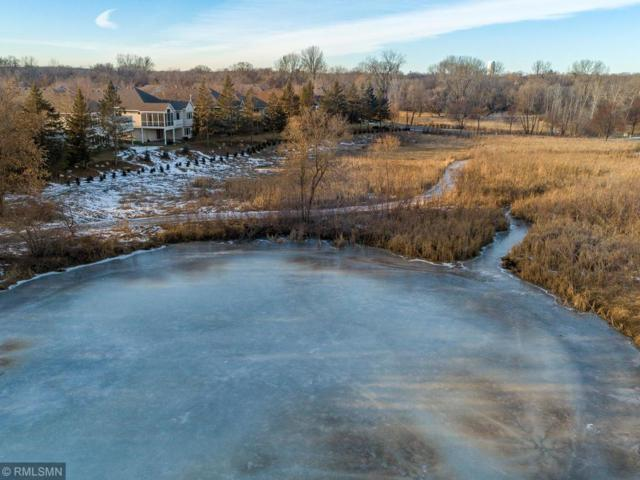 971 Nine Mile Cove East, Hopkins, MN 55343 (#5139690) :: Hergenrother Group