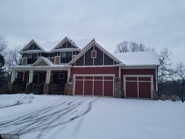 3650 120th Street W, Rosemount, MN 55068 (#5139725) :: The Preferred Home Team