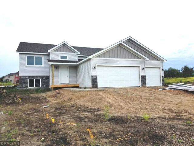 960 Lakewood Trail, Norwood Young America, MN 55397 (#5139818) :: The Sarenpa Team