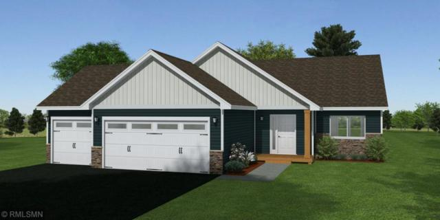 713 Deer Trail, Montgomery, MN 56069 (#5139899) :: The Sarenpa Team