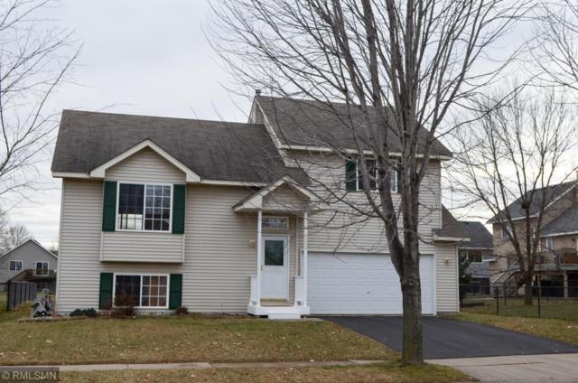 1204 Elm Street, Farmington, MN 55024 (#5139994) :: The Preferred Home Team