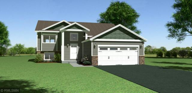 6502 Carrigan Lake Drive, Waverly, MN 55390 (#5140013) :: The Snyder Team
