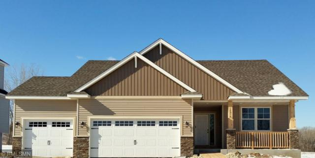 6810 94th Street S, Cottage Grove, MN 55016 (#5140094) :: The Snyder Team
