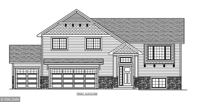 6870 94th Cove S, Cottage Grove, MN 55016 (#5140160) :: The Snyder Team