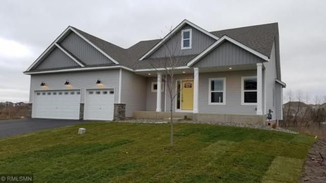 6796 94th Street S, Cottage Grove, MN 55016 (#5140438) :: The Snyder Team