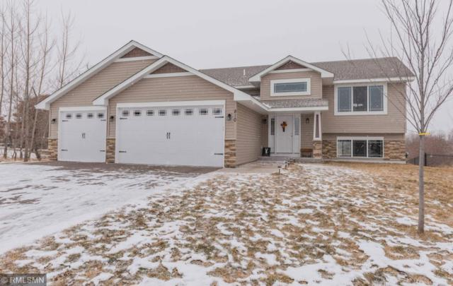 810 Winsome Way NE, Isanti, MN 55040 (#5140831) :: The Preferred Home Team