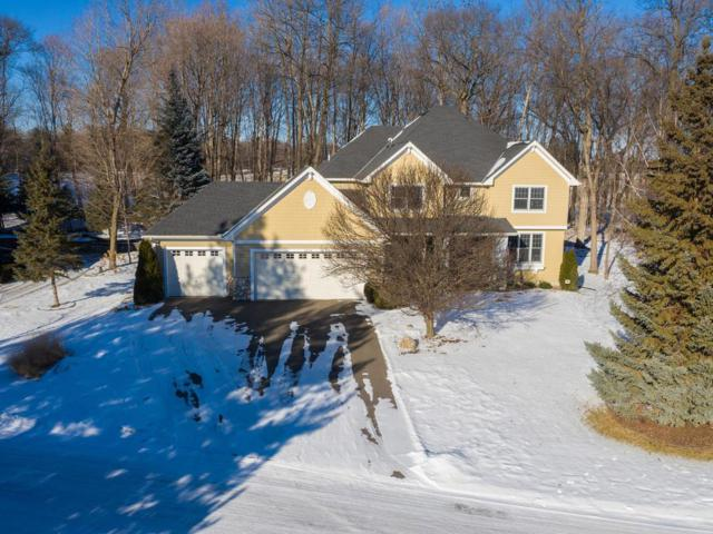 2859 Timberview Trail, Chaska, MN 55318 (#5141190) :: The Janetkhan Group