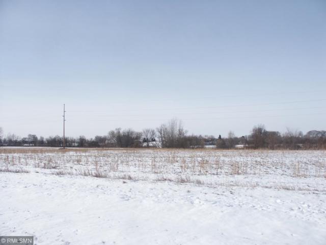 XXX Hwy 101 & Quaday Ave Ne, Otsego, MN 55330 (#5142435) :: House Hunters Minnesota- Keller Williams Classic Realty NW