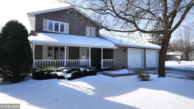 19355 181st Avenue NW, Big Lake Twp, MN 55309 (#5143321) :: The Snyder Team