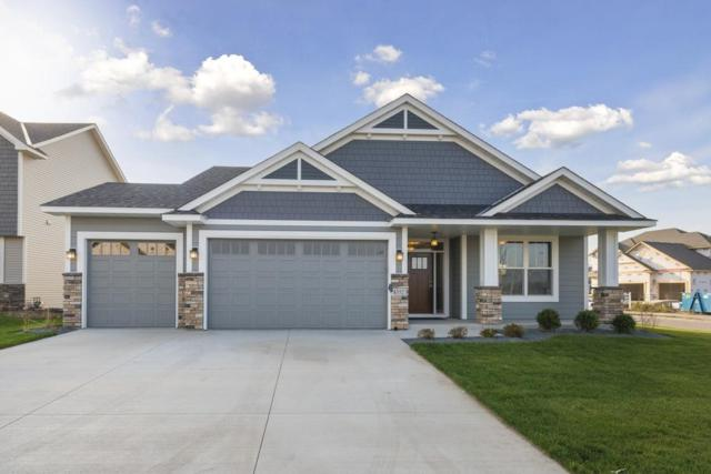 14230 Kingsview Lane, Dayton, MN 55327 (#5143623) :: The Sarenpa Team