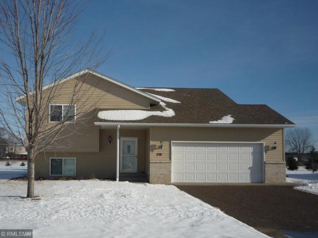 250 2nd Avenue SW, Rice, MN 56367 (#5144534) :: The Snyder Team