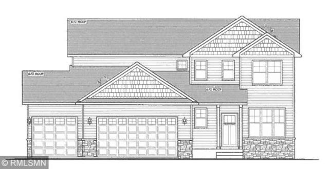 6505 Carrigan Lake Drive, Waverly, MN 55390 (#5145079) :: The Snyder Team