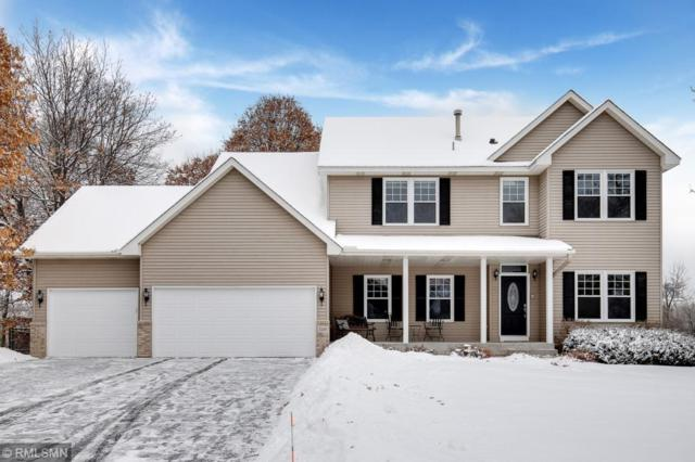 1241 155th Lane NW, Andover, MN 55304 (#5145819) :: The Snyder Team