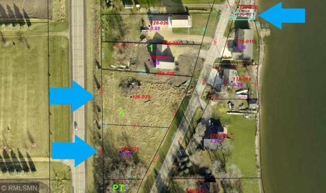 1140 Park Road, Madison Lake, MN 56063 (#5145842) :: The Odd Couple Team