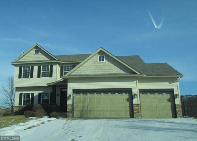 470 Arnica Drive, Watertown, MN 55388 (#5147518) :: The Snyder Team