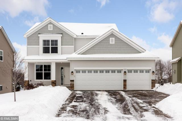 1317 Meadow Court, Shakopee, MN 55379 (#5147649) :: Twin Cities Listed