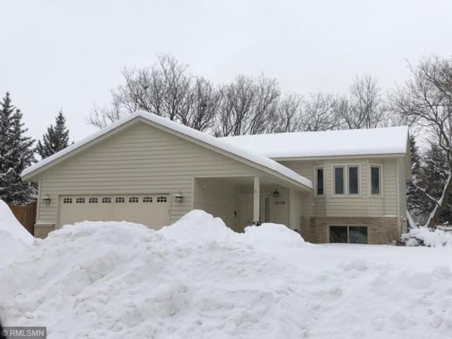 16216 Java Lane, Lakeville, MN 55044 (#5148038) :: Centric Homes Team