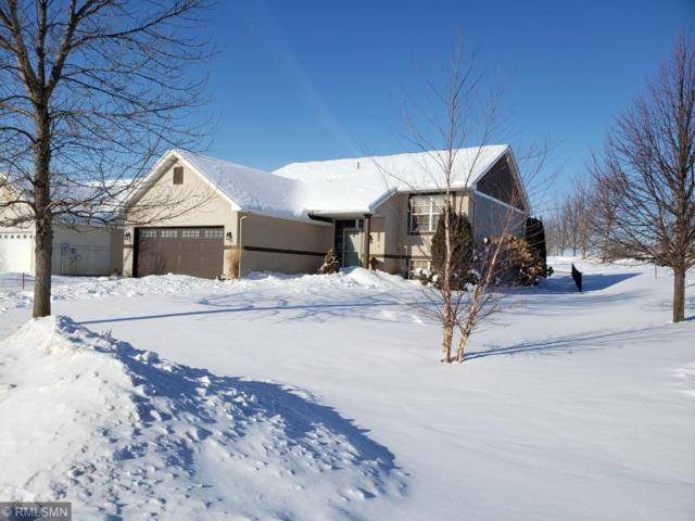 21357 Idaho Avenue, Lakeville, MN 55044 (#5148944) :: Centric Homes Team
