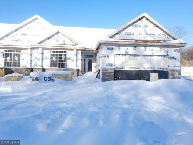 1993 Alexander Road NE, Rochester, MN 55906 (#5149533) :: Centric Homes Team