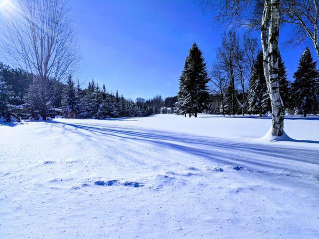0 Duncan Road, Bloomer, WI 54724 (MLS #5193089) :: The Hergenrother Realty Group