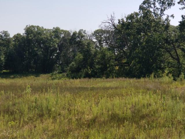 XXXX 244th Avenue NW, Zimmerman, MN 55398 (#5195594) :: The Preferred Home Team