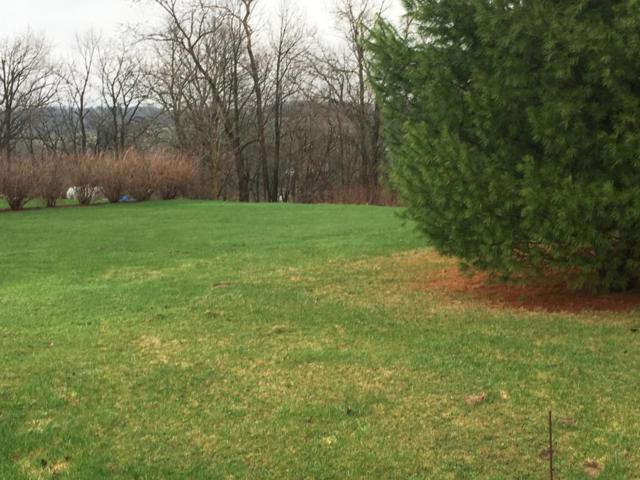 Lot 7 187th Street, Eagle Point Twp, WI 54729 (MLS #5195834) :: The Hergenrother Realty Group