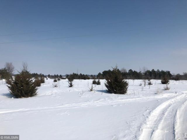 19774 Rosemary Road, Paynesville, MN 56362 (#5196589) :: The Preferred Home Team