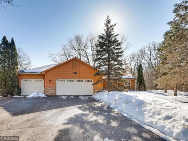 16077 N Enchanted Drive, Andover, MN 55304 (#5196723) :: The Preferred Home Team