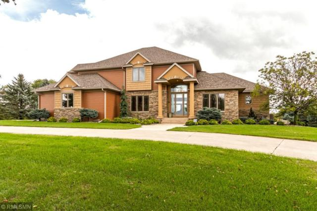 8770 Fitzpatrick Lane NW, Rochester, MN 55901 (#5196981) :: The Preferred Home Team