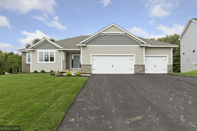 19868 Henley Lane, Lakeville, MN 55044 (#5196984) :: The Sarenpa Team