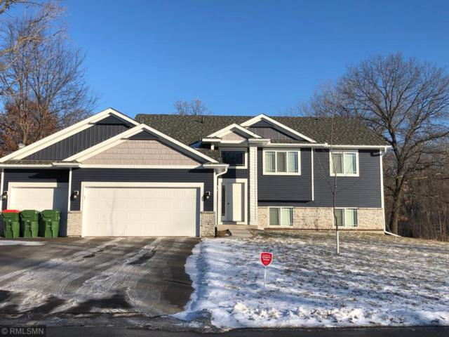 1136 Depue Drive, Champlin, MN 55316 (#5198817) :: The Hergenrother Group North Suburban