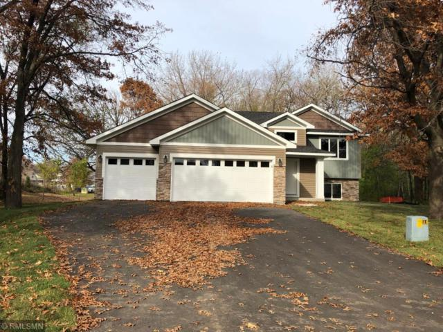 1142 Depue Drive, Champlin, MN 55316 (#5198828) :: The Hergenrother Group North Suburban